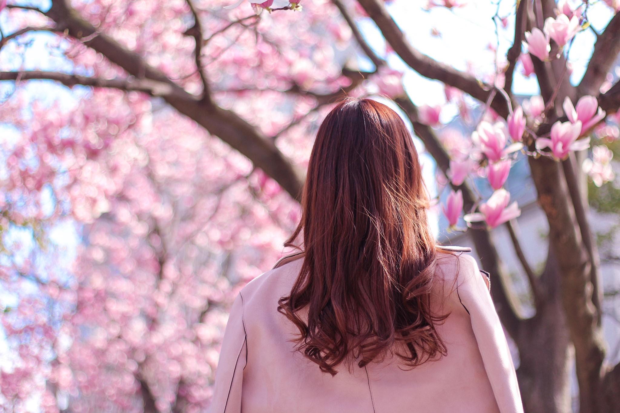 桜の下で女の子がピンクのコートを着て後ろ向きに立っている姿