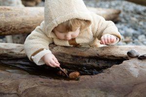 小さな男の子が倒れた大樹のくぼみに入った石を棒を使って取ろうとしている写真