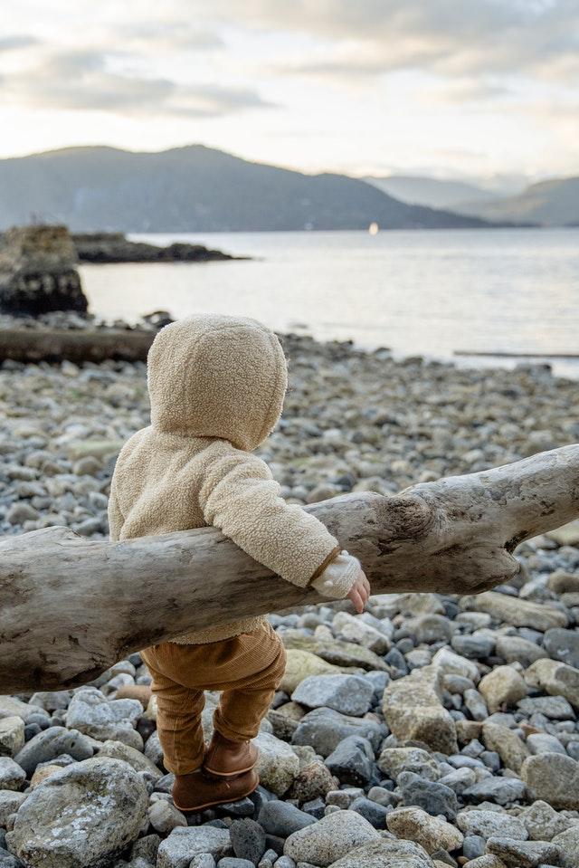 小さな男の子が冬の浜辺で大きな木を持って歩いている写真