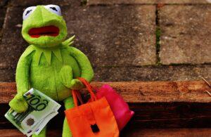 カエルのぬいぐるみが、右手に100ドルの紙幣左手にピンクとオレンジのバックを持って、道端のベンチに座っている写真